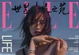 刘雯登<ELLE世界时装之苑>十二月刊封面