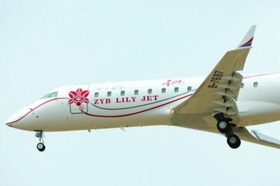 """纯洁高雅百合印在身 """"本山""""号私人飞机"""